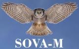 SOVA-M