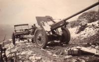 Ф-22 76-мм дивизионная пушка образца 1936 года