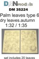 Пальмовые листья желтые, сухие, набор 6
